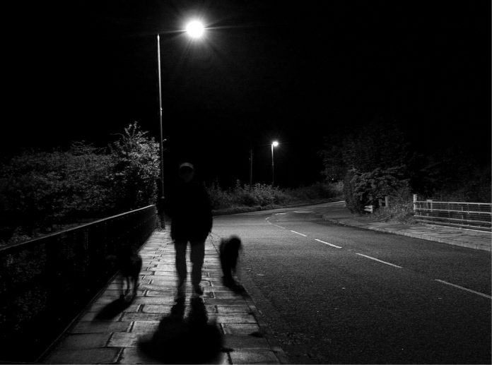Dog-Walking Ghost