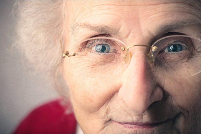 Grandma's Visit