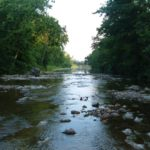 The Creek Beds