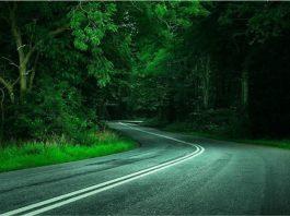 Hurricane Creek Road – Roadside Ghosts