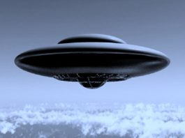 UFO In Flatwoods