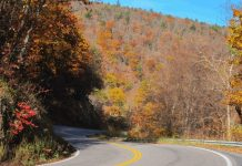 Couple Discovers Bigfoot while Driving in West Virginia