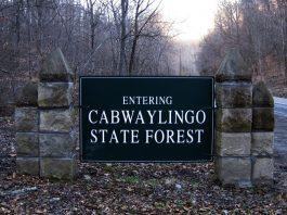 Cabwaylingo Bridge Ghost
