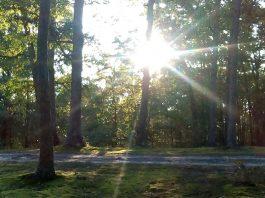 Spruce Creek Ghost